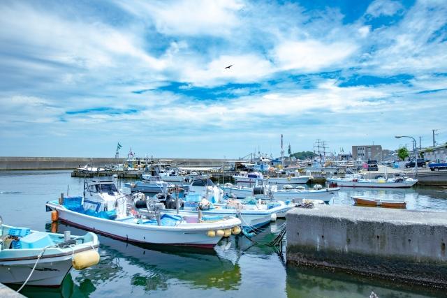 航港局力推簡政便民程序 協助海上違建漁船盡速完成改正