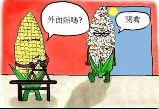 炎炎夏日之不為人知的玉米的心酸