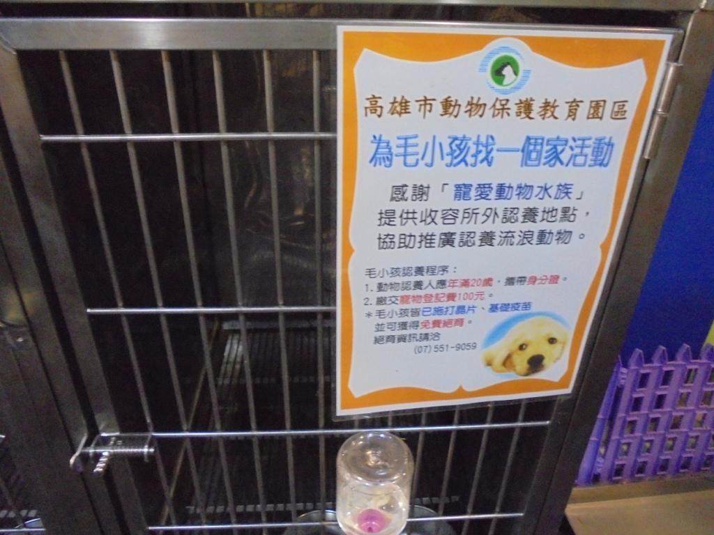 寵物業查核及評鑑 為毛小孩源頭把關!